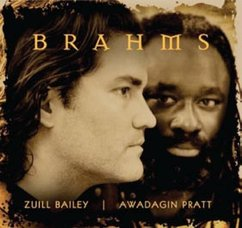 Brahms: Cello Sonatas; Sonatensatz; Song Transcriptions