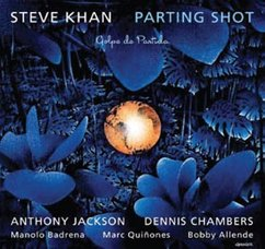 Steve Khan: Parting Shot
