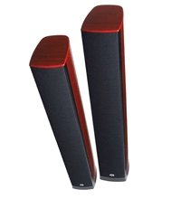 PSB Synchrony Two and Two B loudspeakers