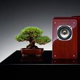 Air Tight Bonsai AL-05 Mini-Monitor