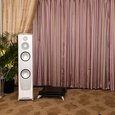 CES Scene: Loudspeakers $25,000 and above