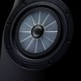 Vienna Acoustics' Revolutionary Driver---The Ideal Realized?