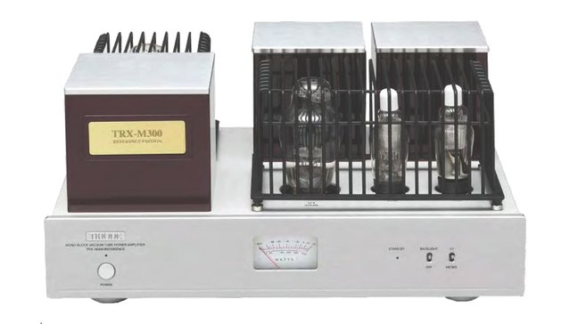 Triode Corporation TRX-M300 Monoblock Amplifier