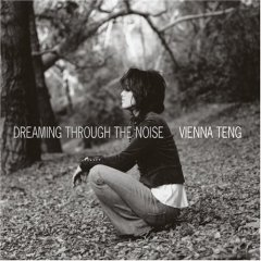 Vienna Teng, Dreaming Through the Noise