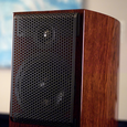 Living Sounds Audio LSA-10 Statement Loudspeaker