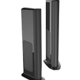 GoldenEar Technology Triton One.R Loudspeaker